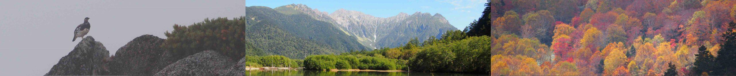 3つの横に並んだ画像 A:春,燕岳のライチョウ E:夏,大正池と穂高連峰 M:秋 尾瀬の紅葉